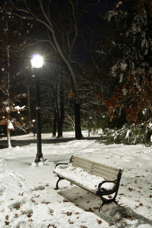 Winter On The Bench