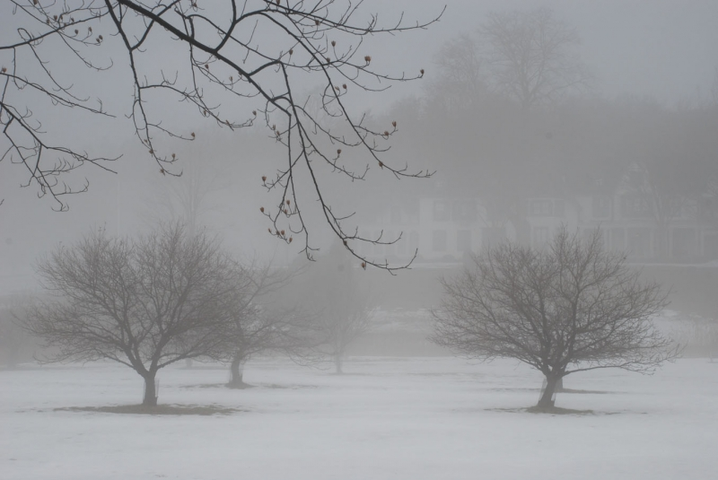 Wintry Fog, Ringwood Manor