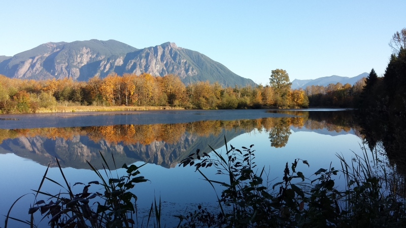 Mt Si And Mill Pond In Fall