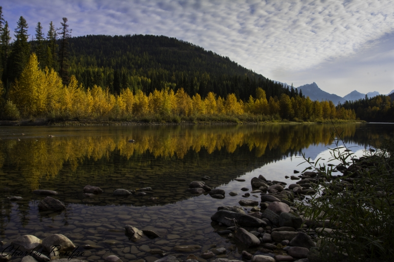 Reflections Of Fall On The Middle Fork Of The Flathead River