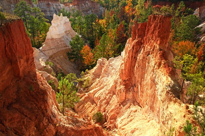 Providence Canyon In The Fall