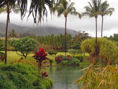 Maui – Tropical Plantation