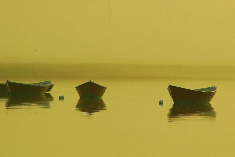 Four Dories
