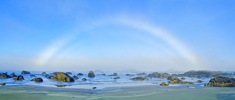 Fogbow Over The Olympic Coast