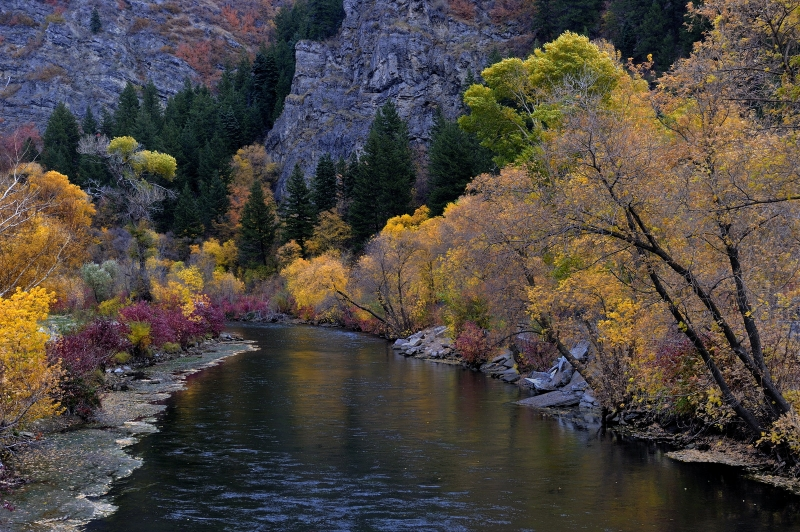 Fall On The Lower Provo River