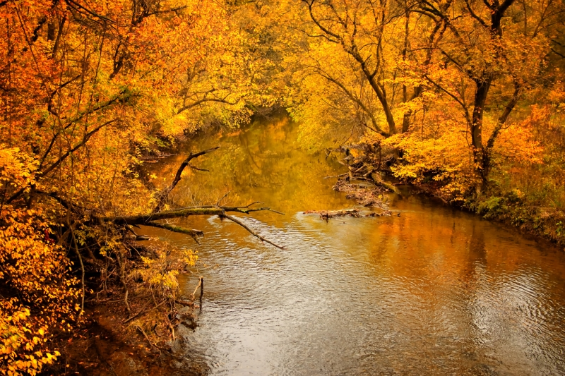 Fall At The River
