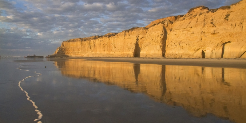 Reflection At Torrey Pines Beach