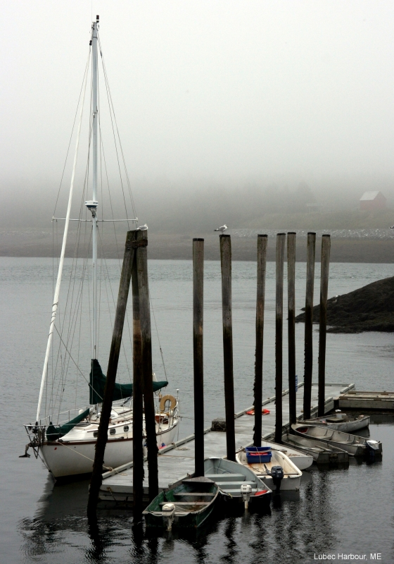 Lubec Harbour, Maine
