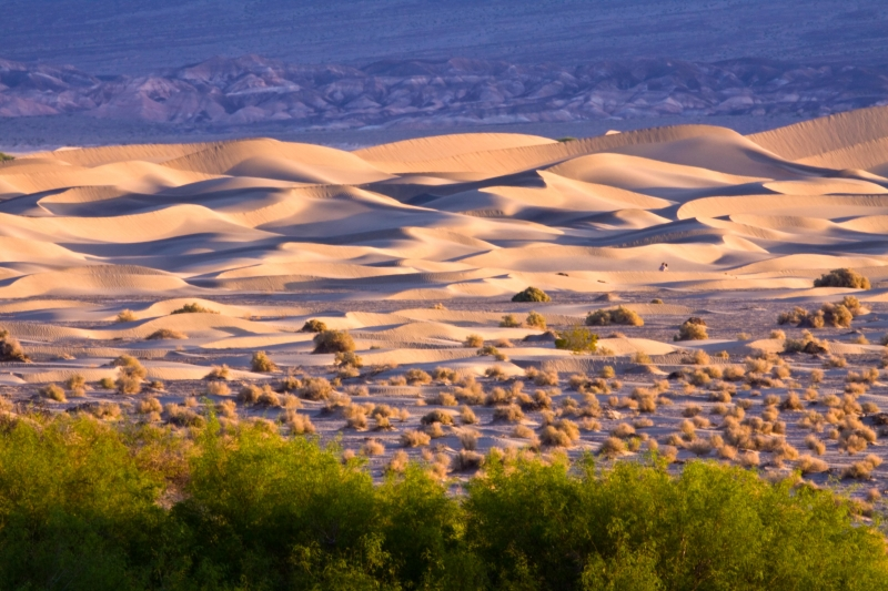 Dunes, Stovepipe Wells