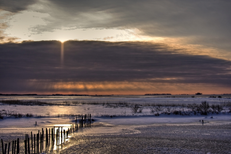 Frozen Sunrise Over Blackwater Wildlife Refuge