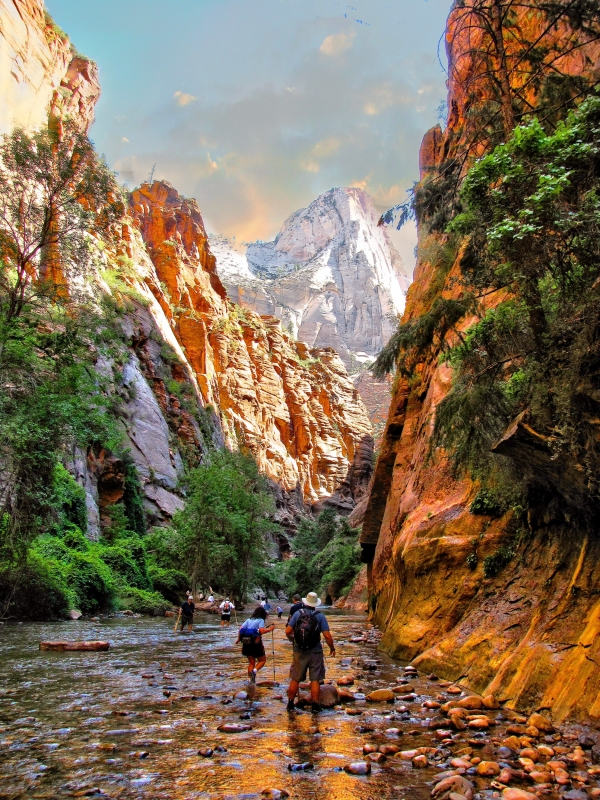 Wading Up Zion Canyon