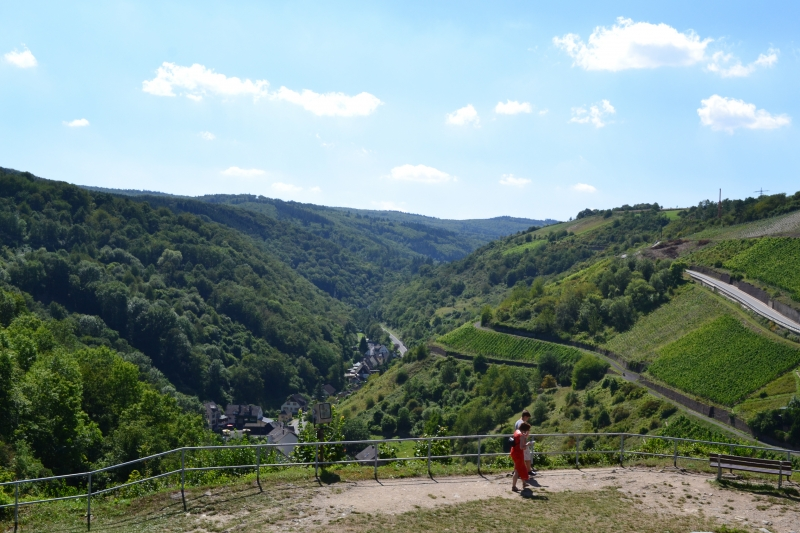 View From Burg Rheinfels
