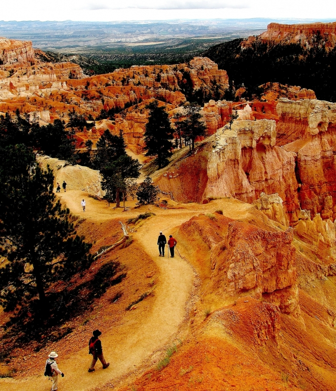 Tourist Trail At Bryce Canyon