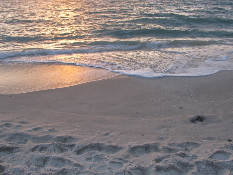 The Naples Shore At Sunset