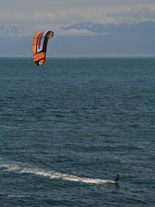 Parasailing Single