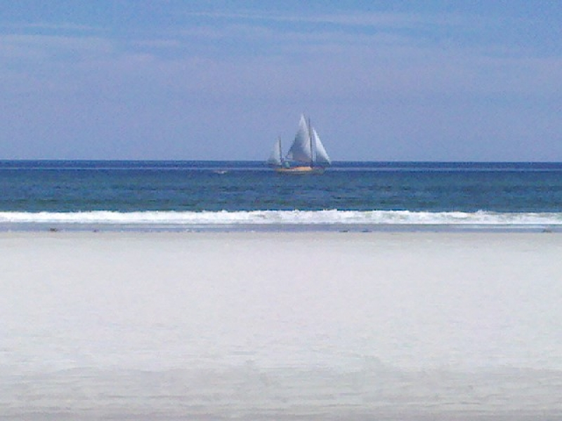 Cranes Beach Sailboat