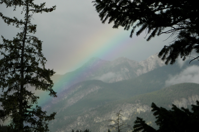 Rainbow At Upper Bow Falls
