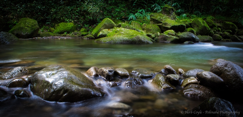 Relaxing At Iao Stream