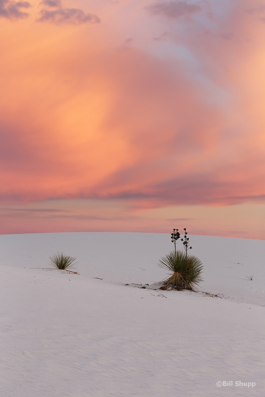 Sunset On White Sands National Monument