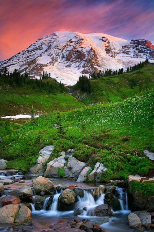 Mount Rainier Dawn