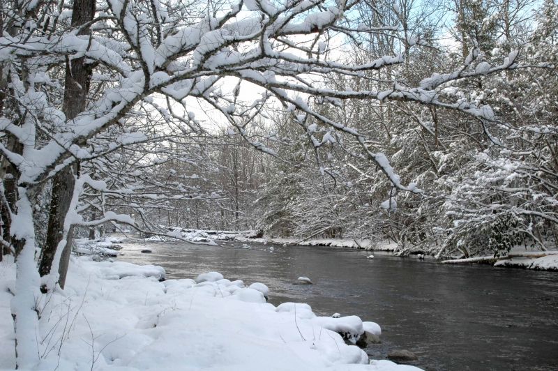 Greenbriar Creek In Snow