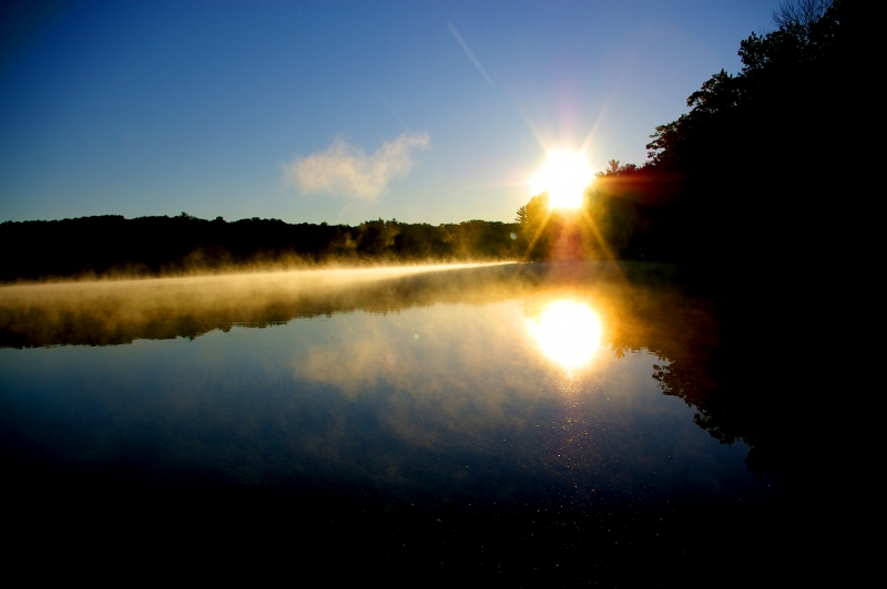 Misty Sunrise On Loon Lake