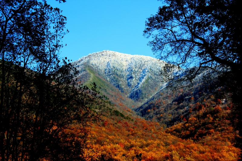 Smokey Mountain Snowtop In Fall