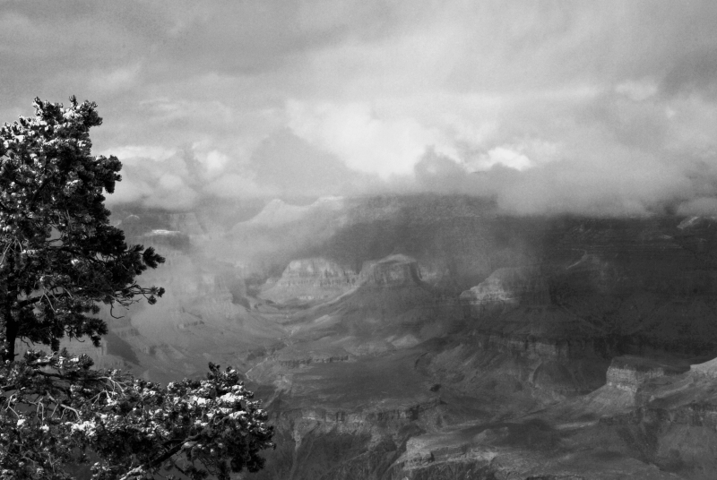 Winter Storm In The Grand Canyon