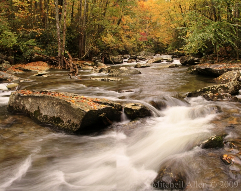 Little River, Great Smokey Mountains National Park