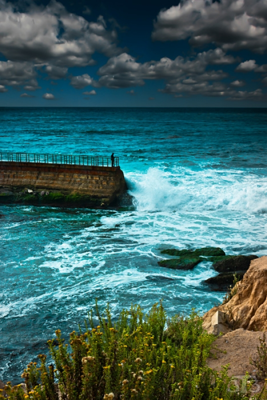 Children's Jetty – La Jolla, San Diego