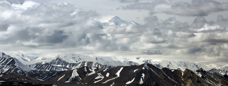 Mount Mckinley Floating Above The Clouds