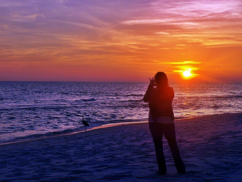 Taking A Picture Of The Sunset
