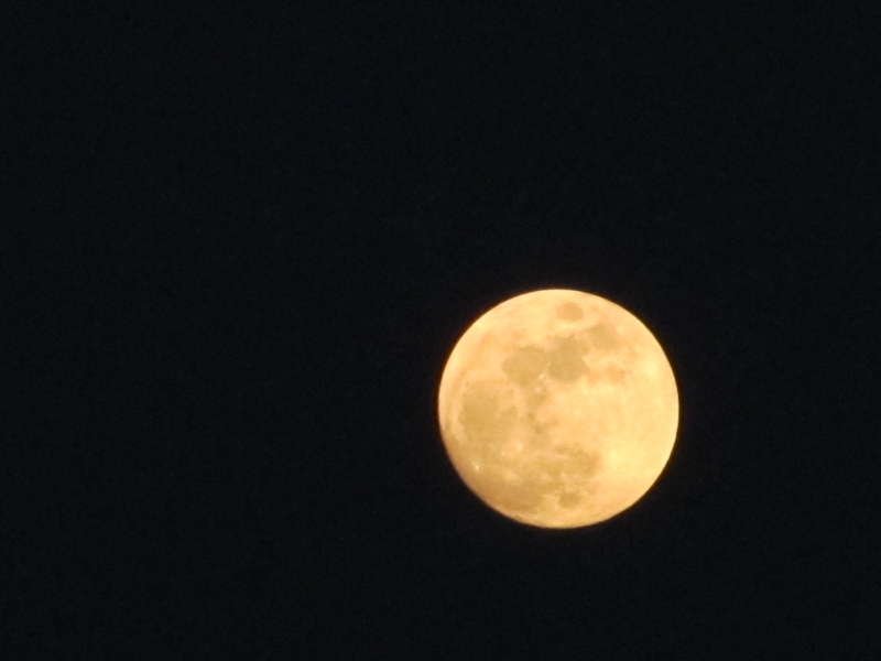 Full Moon In Spring3