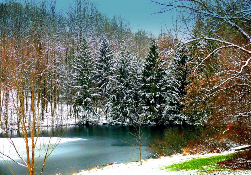 Winter At Wellman Pond