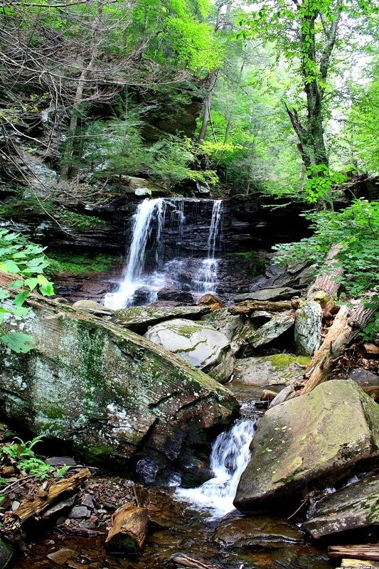 Ricketts Glen Mountain Stream