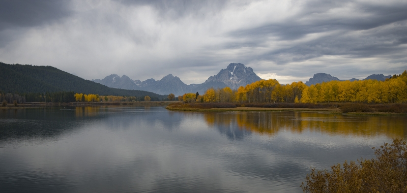 Oxbow Bend On Snake River