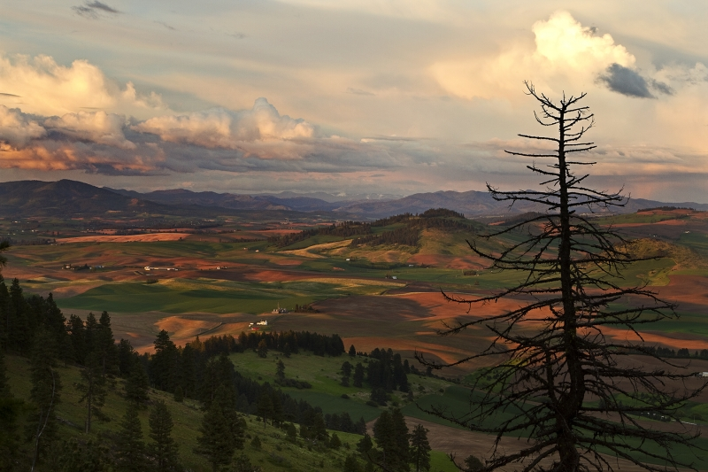 Kamiak Butte Sunset