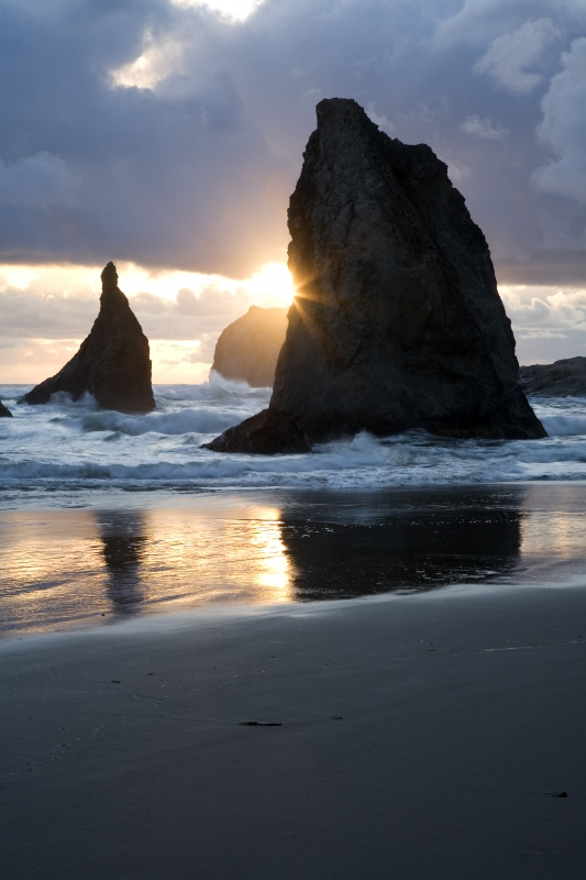 Sunstar, Bandon Beach State Park, Oregon