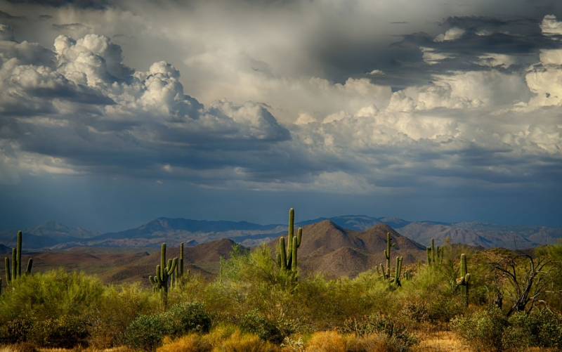 Storms Over The Sonoran Desert