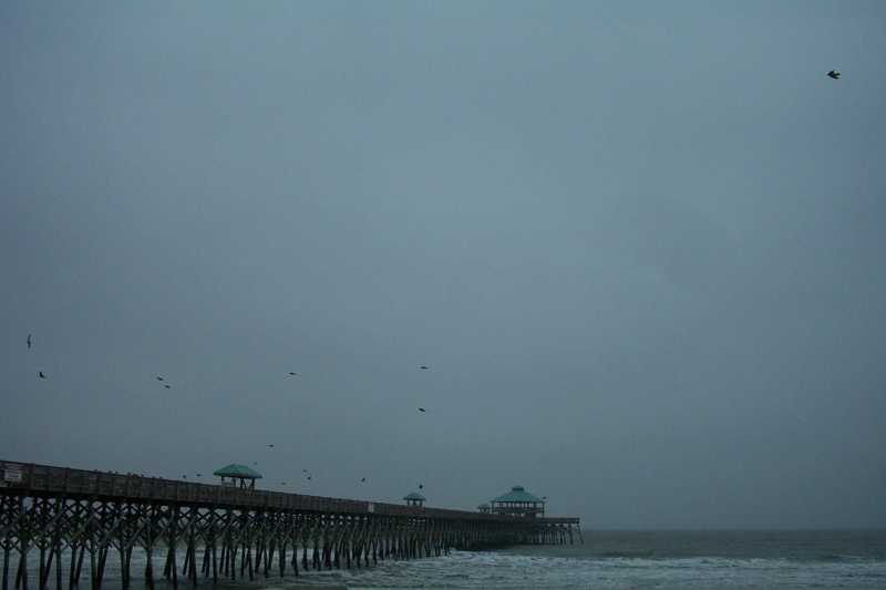 Folly Pier In Winter