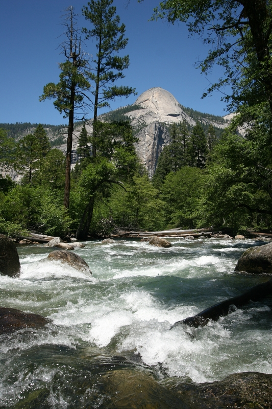 Merced River Runs Wild