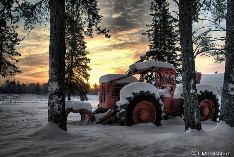 Skidder Sunrise