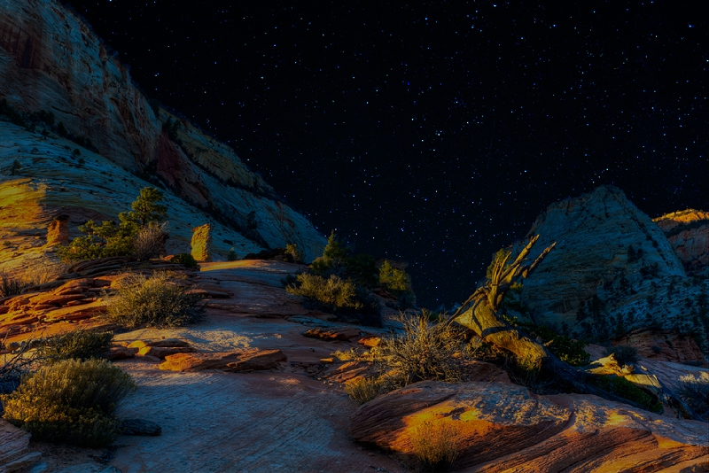 Night Sky In Zion