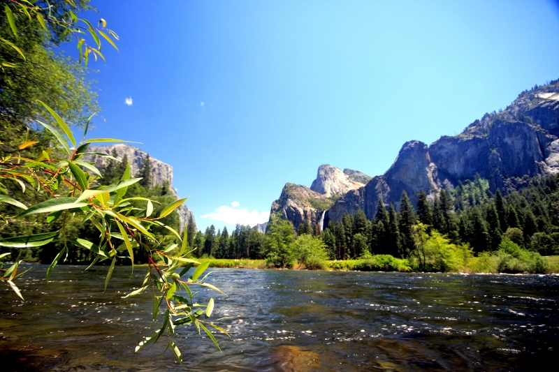 The Beauty Of The Merced River