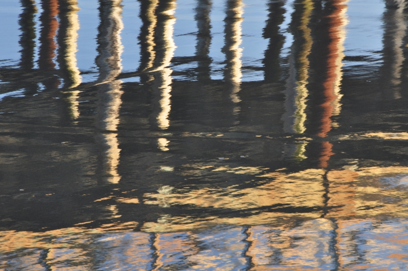 Reflection Of Pier Pilings