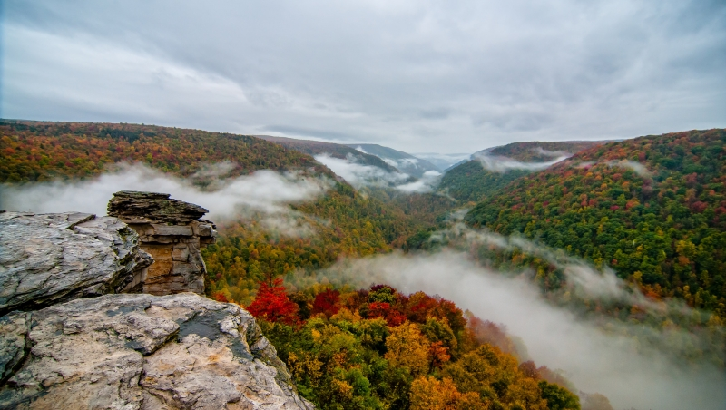 Fall Foliage From Lindy Point