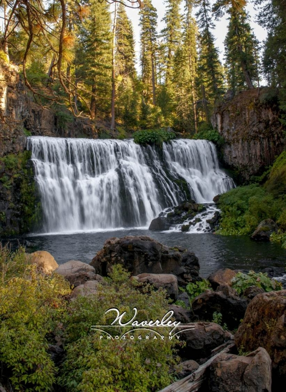 Middle Falls Of The Mccloud