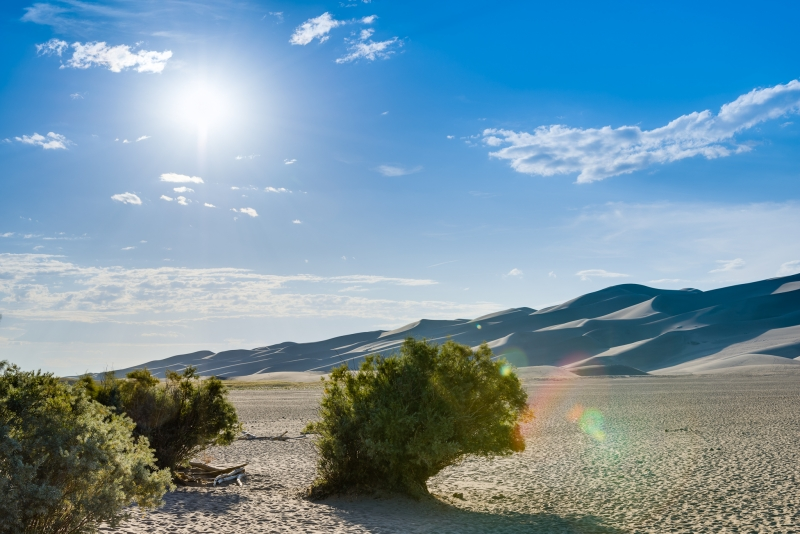 Sunny At Great Sand Dunes