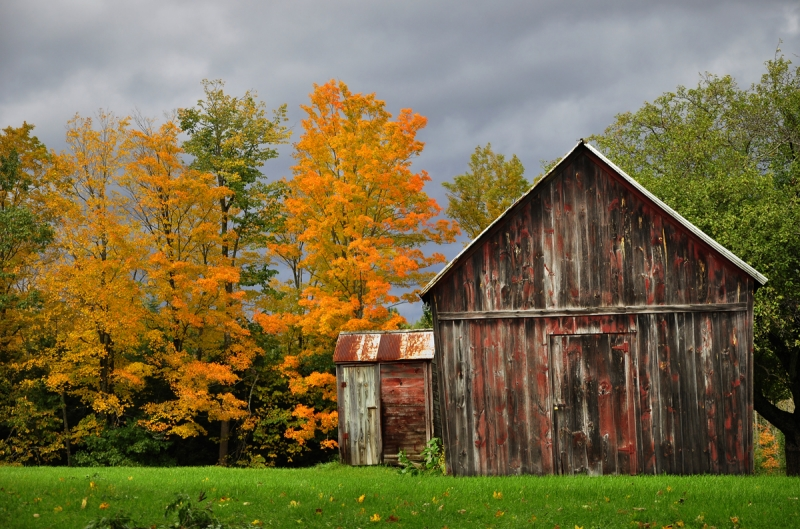 Small Barn And Autumn Colors