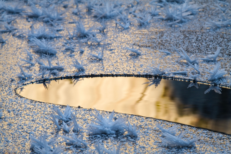 Hoar Frost, Sunrise, Granite Reflection